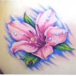 Azalea Tattoo