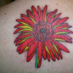 Gerbera Tattoo