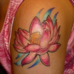 lotus most tattooed flower on shoulder