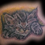 Sleep Kitten Tatoo