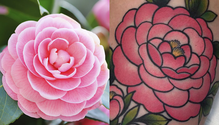 35 Best Camellia Flower Tattoo Designs Meaning And Ideas